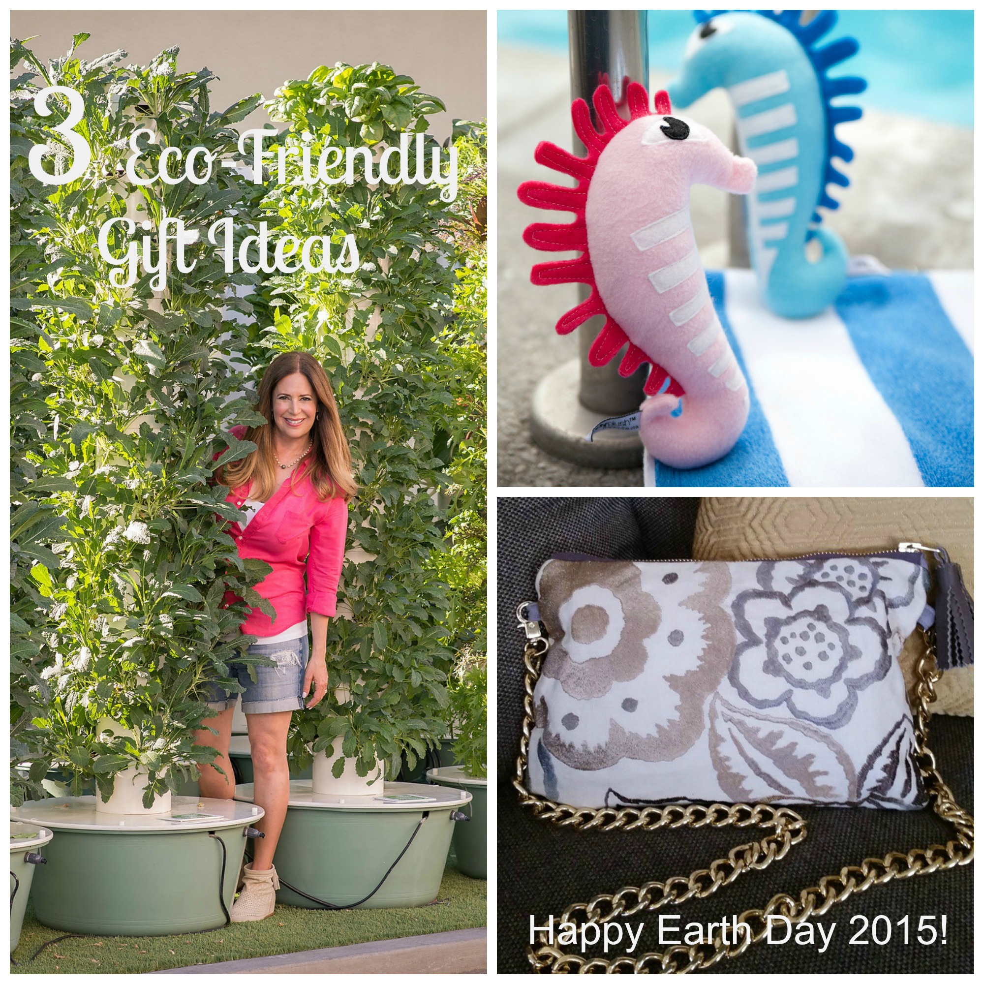 3 Eco Friendly Gift Ideas
