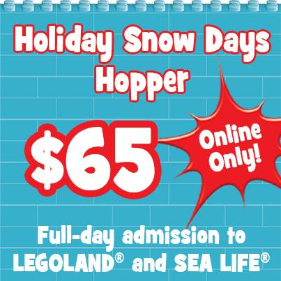 holiday-snow-days-deal