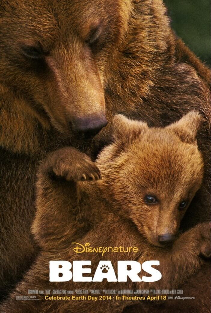 bears-Disney-Nature