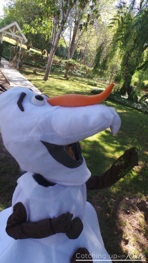 olaf costume close up