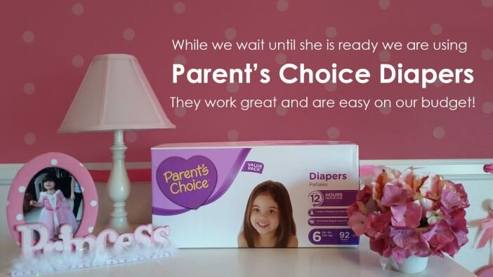 Parents Choice Diapers sold exclusively at Walmart