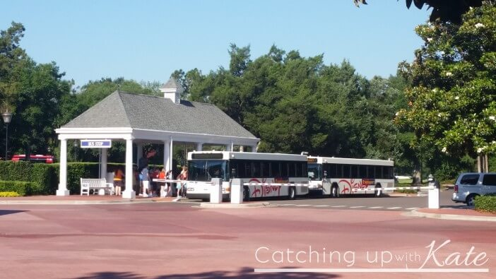 buses for Walt Disney World